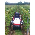 BLADE 1000i LT EPS LUXE T3